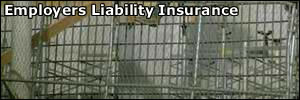 Employees working with employers liability insurance